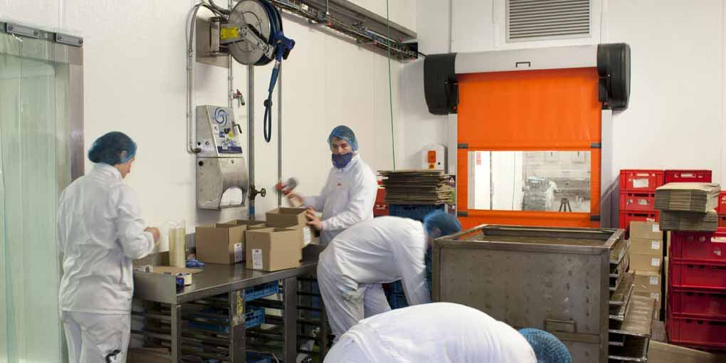 Automatic flexible doors for the food processing industry